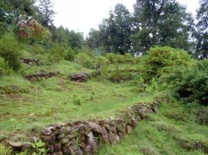 Ein Weltwärts Freiwilligendienst Äthiopien führt Dich in die Natur